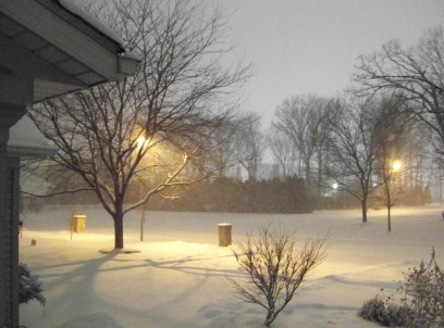 snowstorm 001cr